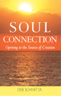 Soul Connection by Deb Schnitta Book Cover Image